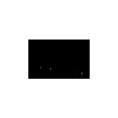 338x200-REIN